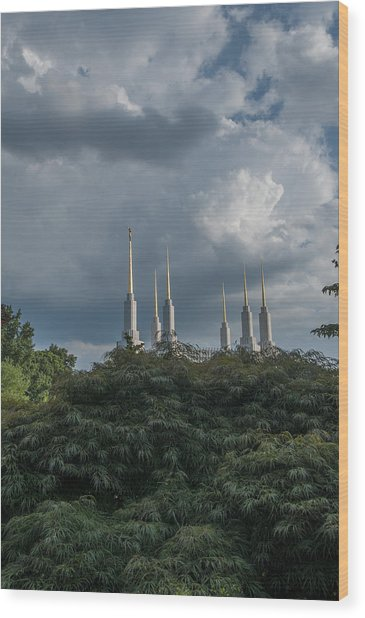 Lds Storm Clouds Wood Print