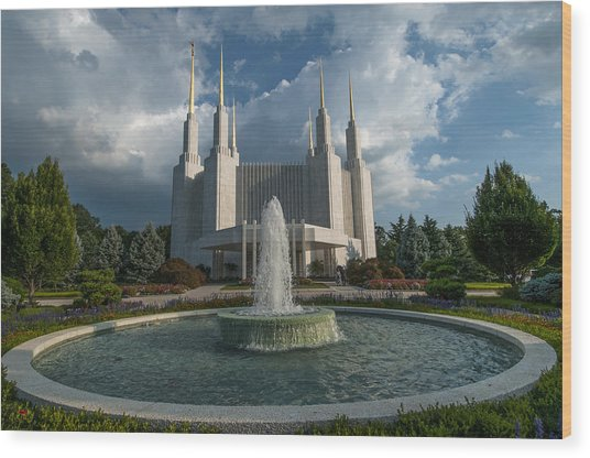 Lds Water Fountain  Wood Print