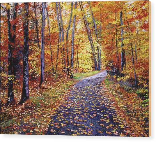 Leaf Covered Road Wood Print