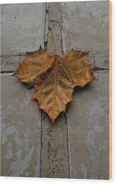 Leaf Cross Wood Print