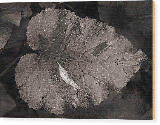 Leaf On A Leaf Wood Print