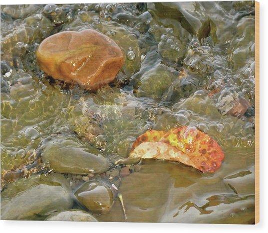 Leaf, Rock Leaf Wood Print