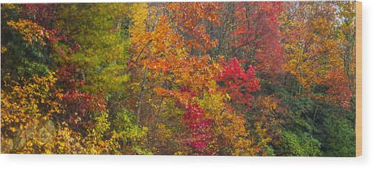 Leaf Tapestry Wood Print