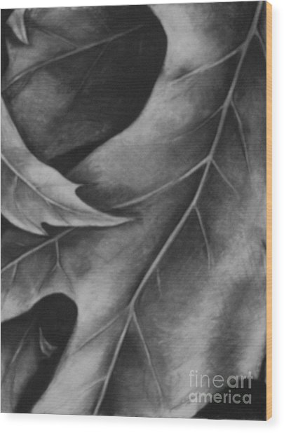 Leaf The Final Stage Wood Print by Jamey Balester
