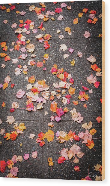 Leafy Autumn Walk Wood Print