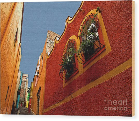 Leafy Windows Wood Print by Mexicolors Art Photography