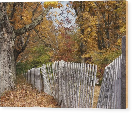 Leaves Along The Fence Wood Print