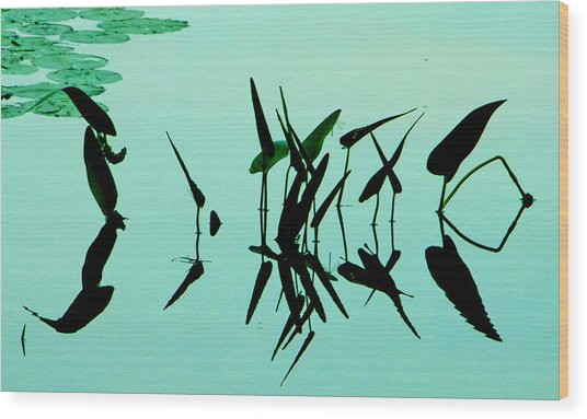 Leaves And Dragonflies 2 Wood Print