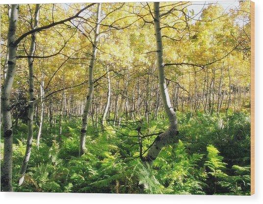 Leaves And Ferns Wood Print by Caroline Clark