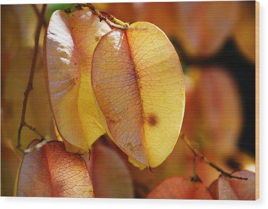 Leaves Hang For Fall-gerorgia Wood Print