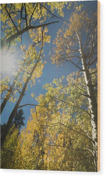Leaves Of Fall Wood Print