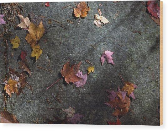 Leaves On Stone Wood Print by Randy Muir
