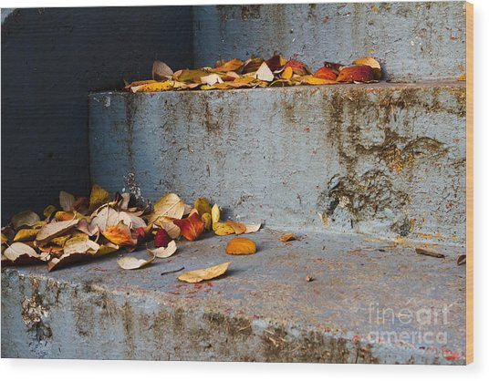 Leaves On The Stairs Wood Print