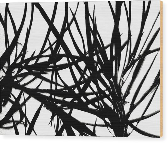 Lee Krasner Spider Plant Detail 1 Wood Print