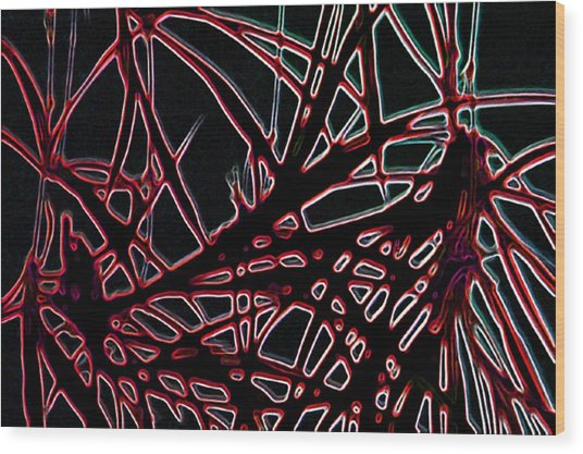 Lee Krasner Spider Plant Digital Detail 2 Wood Print