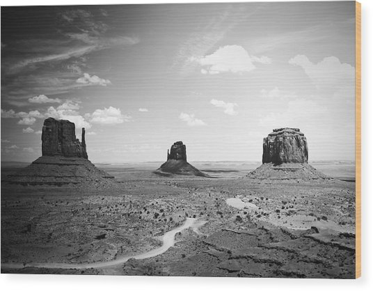 Left And Right Mittens And Merrick Butte Black And White Wood Print by Ryan Kelly