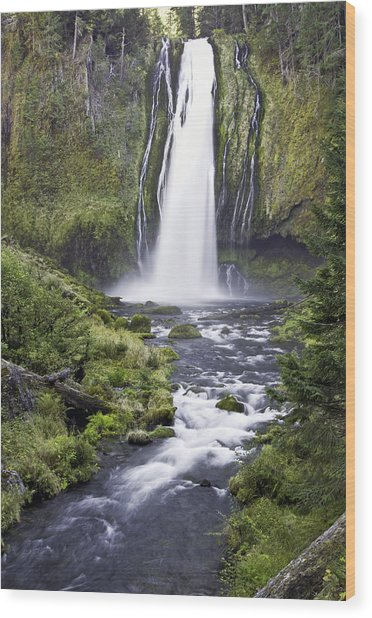 Lemolo Falls Wood Print