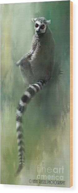 Lemur Catching Rays Wood Print