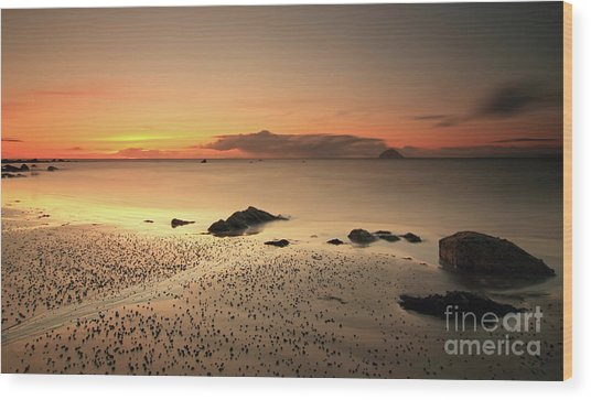 Lendalfoot Sunset Ref8962 Wood Print