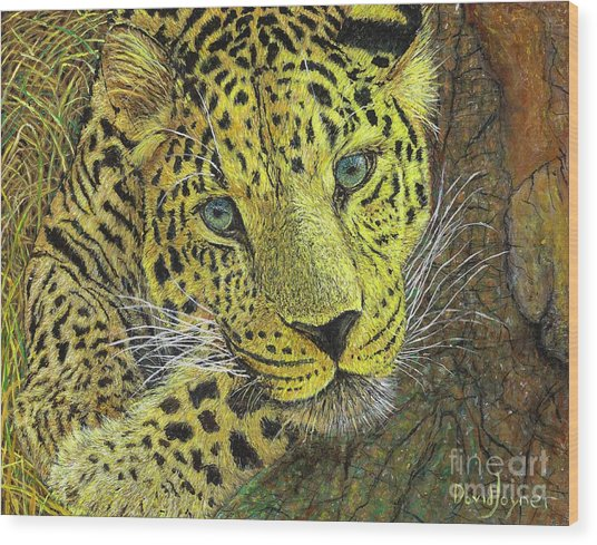 Leopard Gaze Wood Print