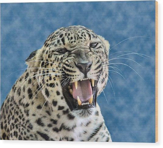 Leopard  Wood Print by Keith Lovejoy