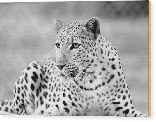 Leopard Wood Print by Riana Van Staden