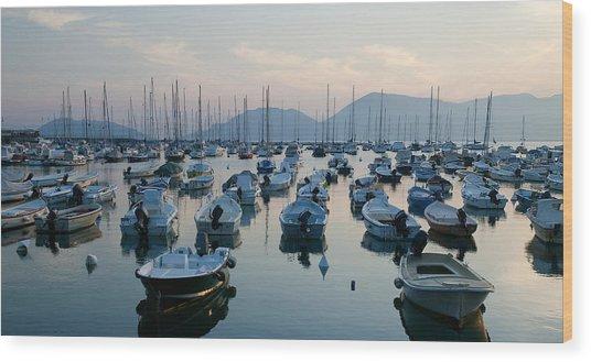 Lerici Marina Wood Print by Neil Buchan-Grant