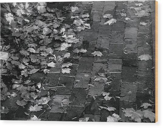 Les Feuilles Mortes Wood Print