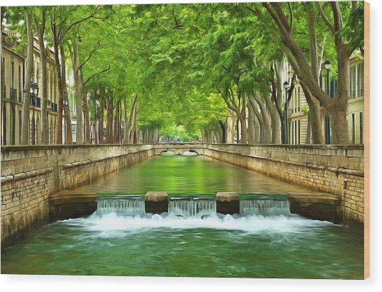 Les Quais De La Fontaine Nimes Wood Print