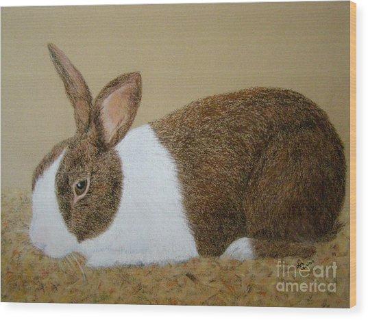 Les's Rabbit Wood Print