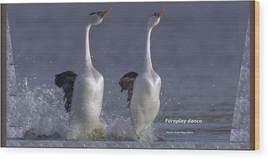 Let Humans Learn From The Nature  Foreplay Dance It Pleases Everyone Wood Print