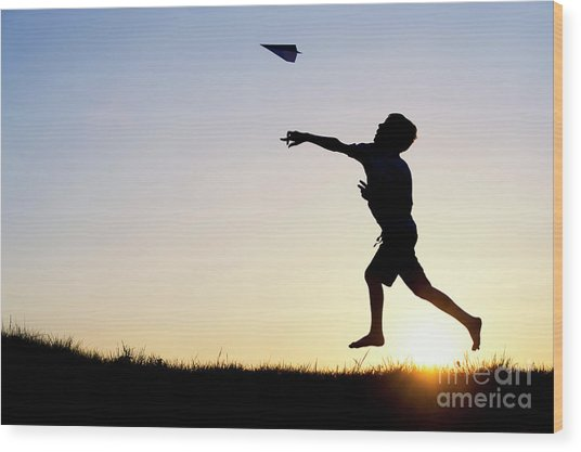 Let It Fly Wood Print by Tim Gainey