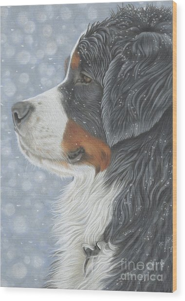 Wood Print featuring the painting Let It Snow by Donna Mulley
