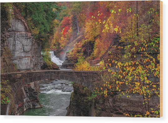Letchworth Lower Falls Wood Print