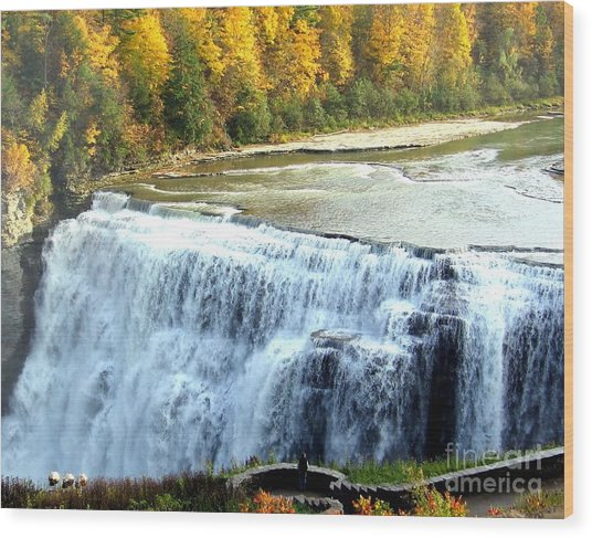Letchworth State Park Middle Falls Autumn Wood Print