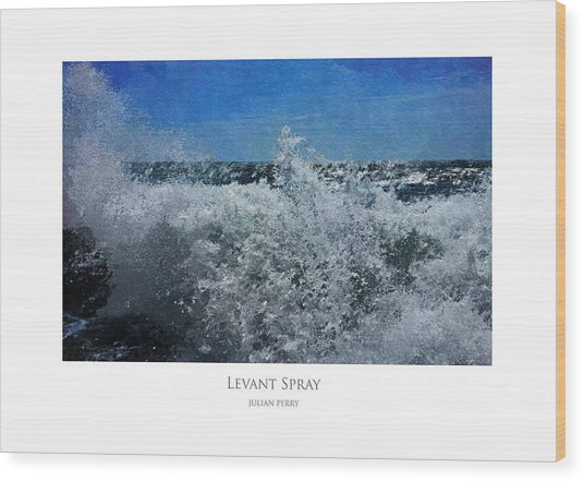 Wood Print featuring the digital art Levant Spray by Julian Perry