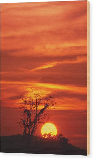 Lexington Sunset Wood Print
