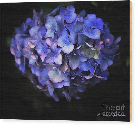 l'Hortensia bleu Wood Print