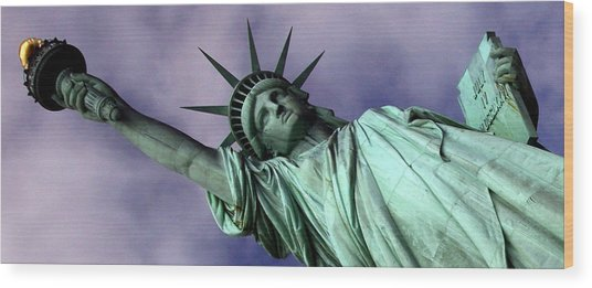 Liberty 2 Wood Print by William  Todd