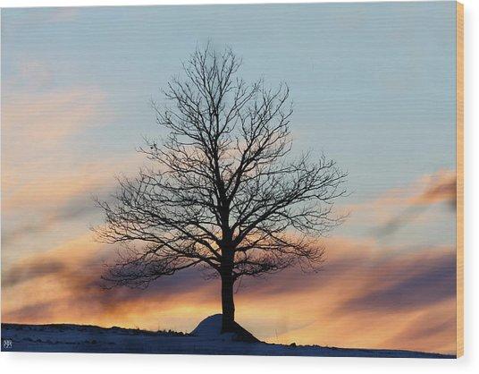 Liberty Tree Sunset Wood Print