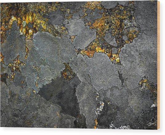 Lichen On Granite Rock Abstract Wood Print