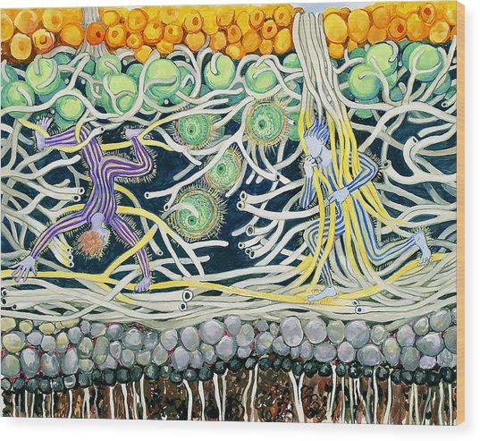 Lichen Playground Wood Print