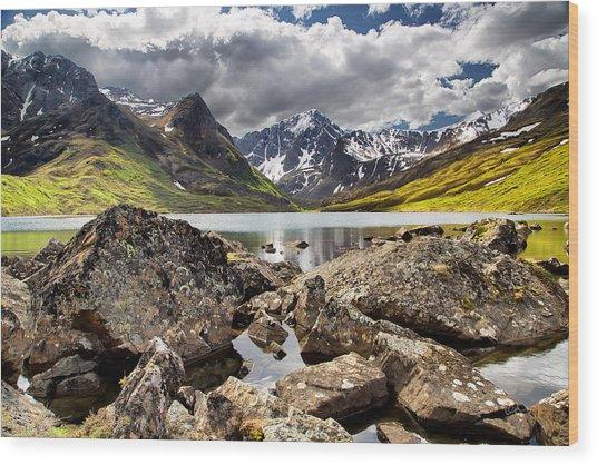 Lichen View Wood Print
