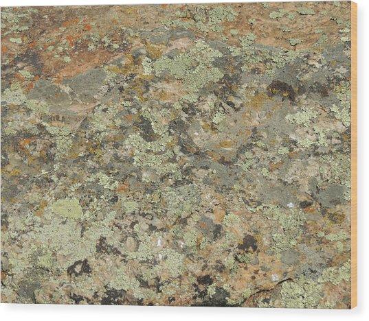 Lichens On Boulder Wood Print