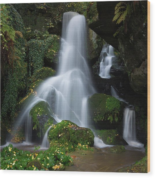 Lichtenhain Waterfall Wood Print