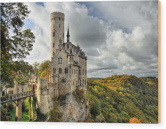 Wood Print featuring the photograph Lichtenstein Castle by Ryan Wyckoff