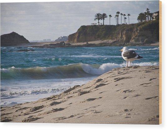 Lifeguard Wood Print by Carl Jackson