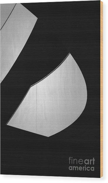 Light And Dark Wood Print by Hideaki Sakurai