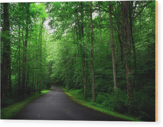 Light And Shadow On A Mountain Road Wood Print