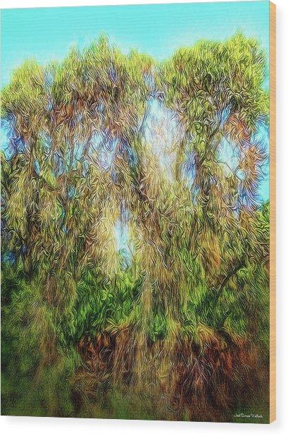 Light Beyond The Woods Wood Print by Joel Bruce Wallach